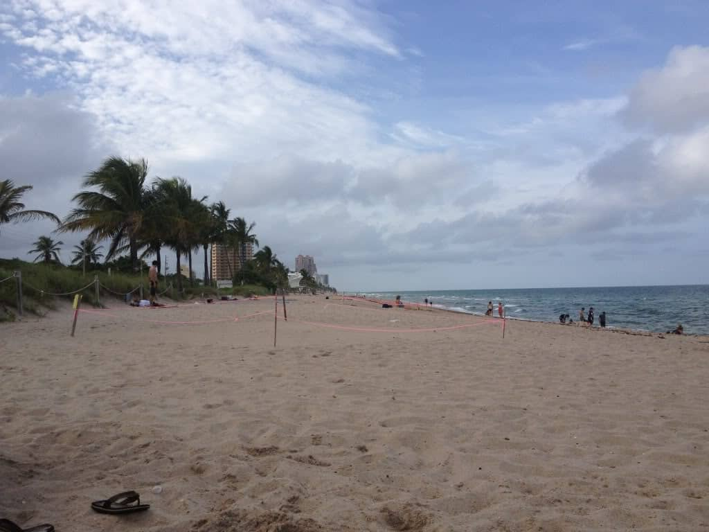things-to-do-in-fort-lauderdale-with-kids
