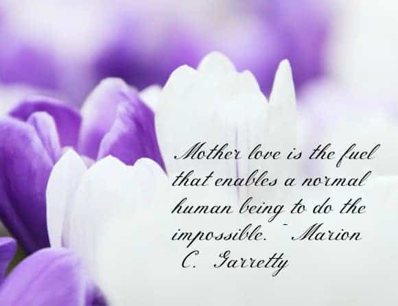 beautiful-mothers-day-quotes-and-messages