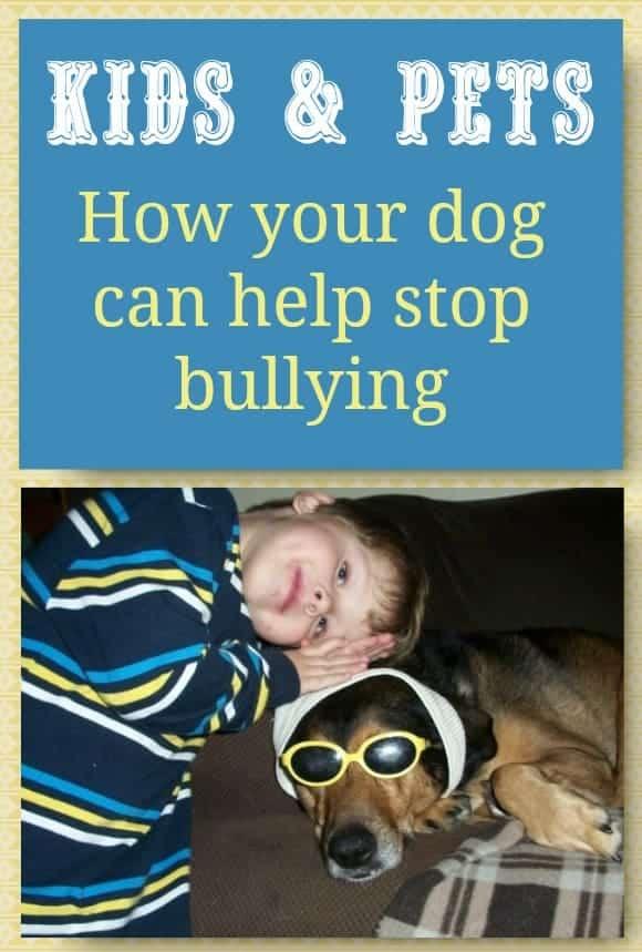 pet-stop-bullying-boost-self-esteem