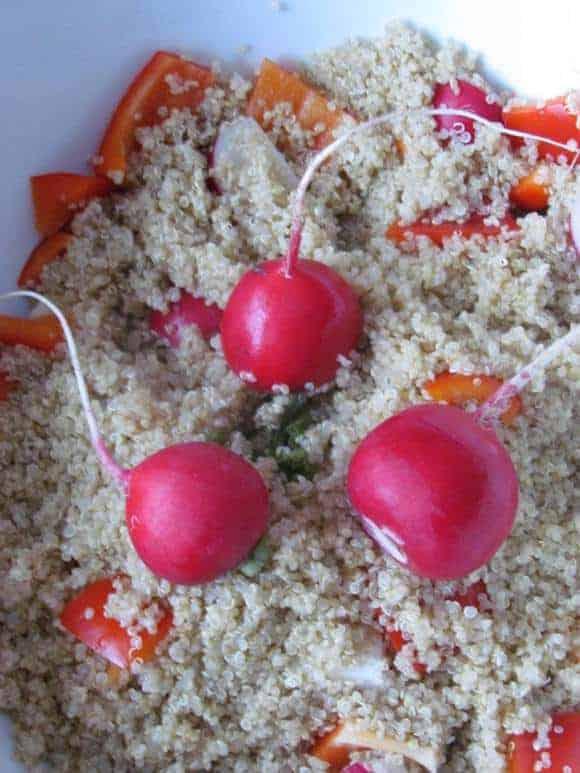 quinoa-salad-recipe-radish