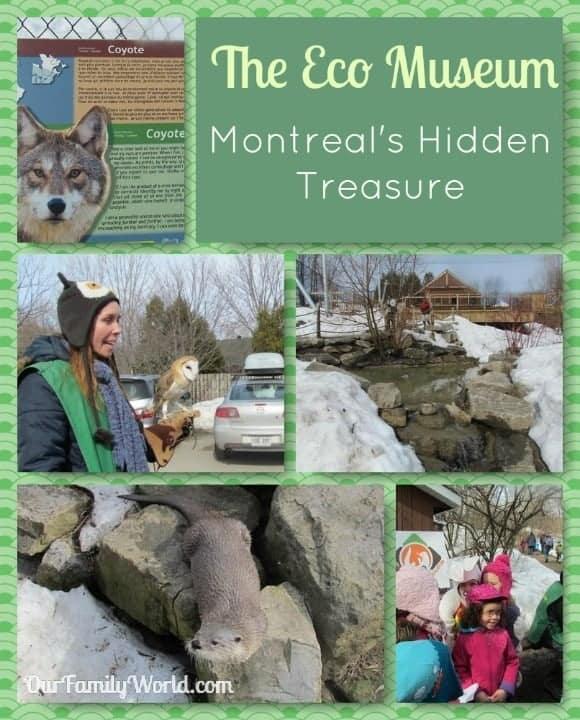 eco-museum-montreals-hidden-treasure