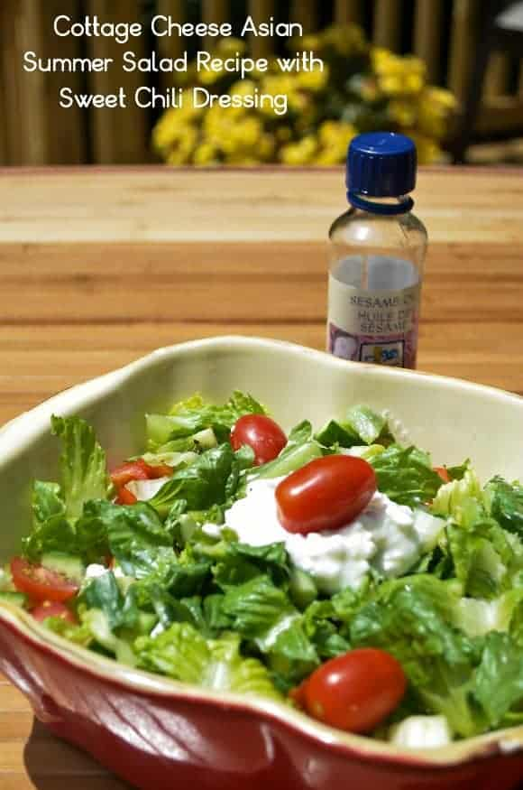 healthy-recipe-cottage-cheese-aisan-summer-salad-recipe