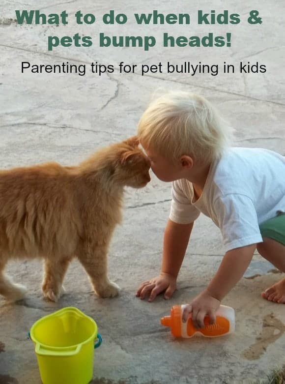 parenting-tips-kids-bullying-pets