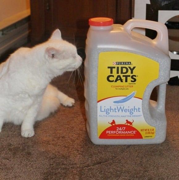 tidy-cats-lightweight-litter-dollar-general