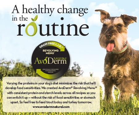 avoderm-natural-dog-food-review