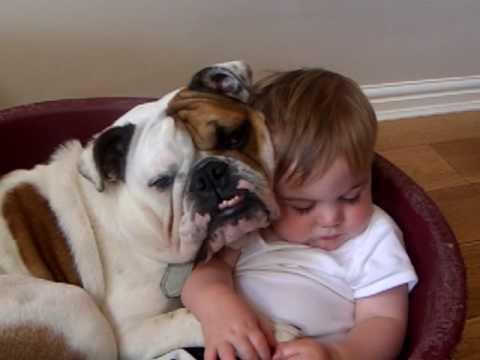 kids-fall-asleep-weirdest-places