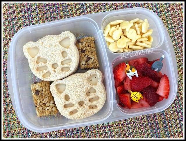bento-box-ideas-kids-school-lunches
